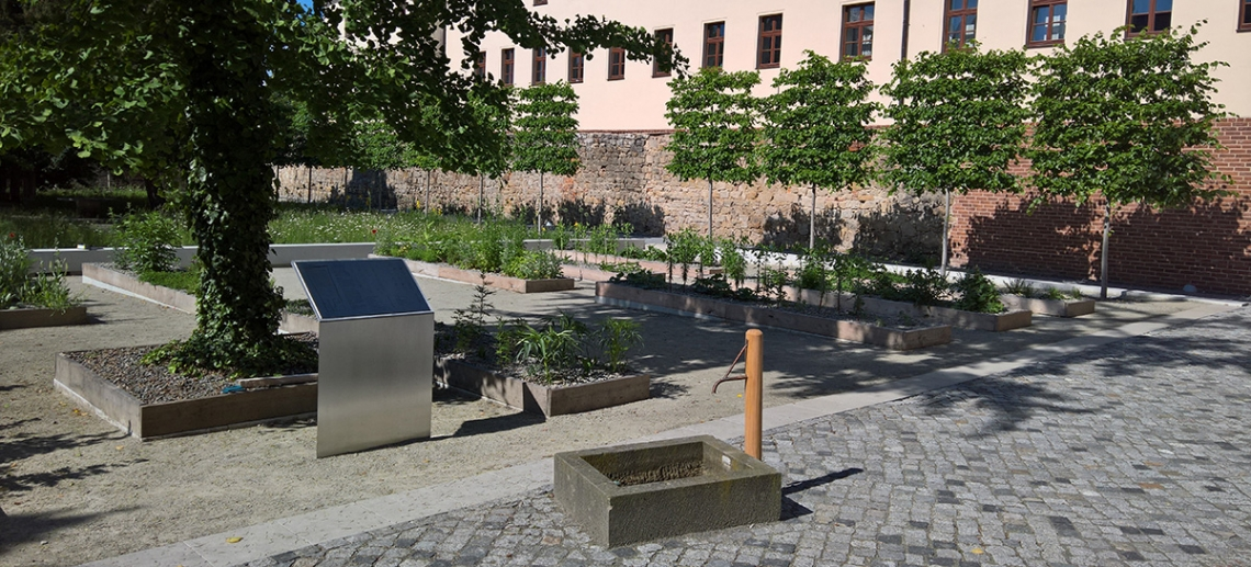 Herb garden with spring water fountain